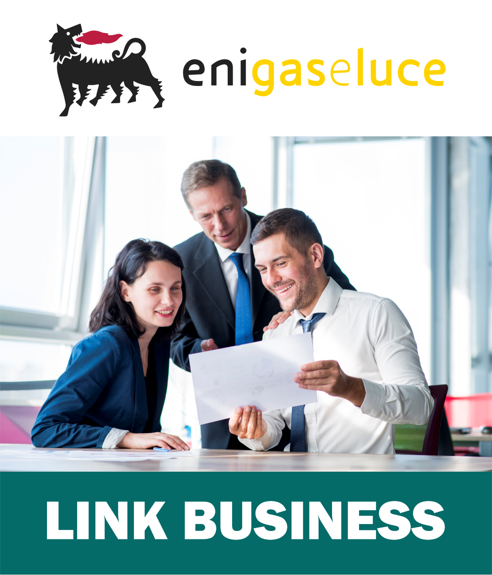 Offerta Link Business Luce e Gas
